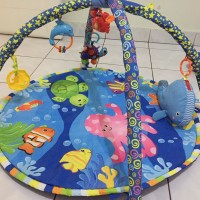 ocean playmat dan fisherprice play gym