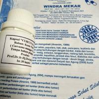 kapsul kunir putih(curcuma mangga val.)(isi 30 kapsul)
