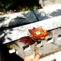 bunga Tempurung Batok kelapa