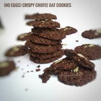 Jual Tekpuk Oat Cookies (Asi Booster) Murah