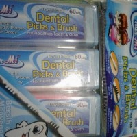 Dental Picks & Brush / Tusuk Gigi