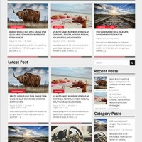 Pintobox Template Wordpress By Theme Country
