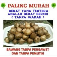 Jual Bawang Hitam Tunggal/Lanang/250 gr/1/4 Kg (PALING MURAH) Murah