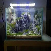 Aquascape Nano Tank 30x20x25