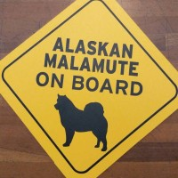 papan/signage alaskan malamute on board