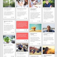 Pingraphy Template Wordpress By Theme Country