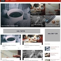 ViralBlog Template Wordpress By Theme Country