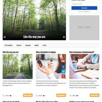 Wiral Template Wordpress By Theme Country