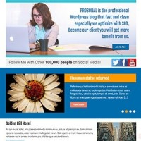 Prosonal Template Wordpress By Theme Country