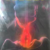dvd film horror Incarnate