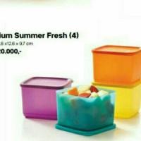 Jual Tupperware Medium summer fresh (4) Murah