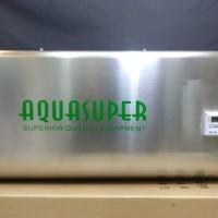Wall Mounted Ozone Generator Sterilizer O3 / Ozonenizer 03 Gram / H