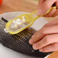 Jual TERLARIS Alat Pembersih Sisik Ikan Praktis Murah Fish Chef Kitchen Murah