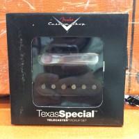 Fender Texas Special Telecaster Pickups