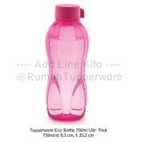 Tupperware Eco Bottle 750ml Tutup Ulir - Purple (Ungu)