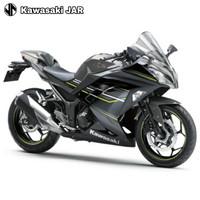 Kawasaki Ninja 250 ABS LTD - Grey