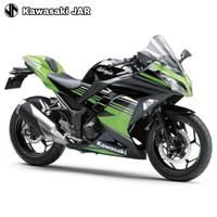 Kawasaki Ninja 250 LTD - Green