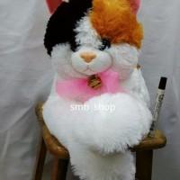 Bonek Kucing Cantik Banget Ada Lonceng Besar