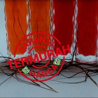 Jual Bulu Perindu Asli Dayak 250 Helai +4 Botol Minyak Merah Delima Murah
