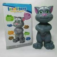 Jual Mainan Tomcat bisa nyanyi bicara cerita - boneka kucing tom - anak Murah