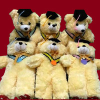 Jual Boneka Wisuda Teddy Bear Warna Cream Rasfur Dakron Medium Murah