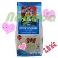 Jual Quaker Quick Cooking Oatmeal Cepat Masak 200 Gr Cereal/Sereal/Oatmeal Murah