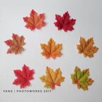Artificial Maple leaves / daun maple palsu untuk fotografi isi 8 pcs