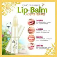 Bioaqua Honey Lip Balm / Lip Balm Madu