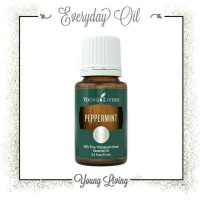 Jual young living pepermint essential oil Murah