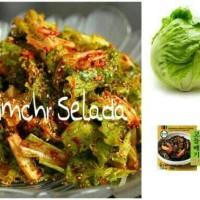 Jual Korean Cabbage Kimchi Selada Air Korea Import Murah