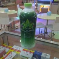 Chlorophyll Synergy Original