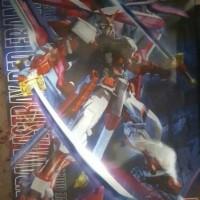 Gundam MG Astray Red Frame Kai