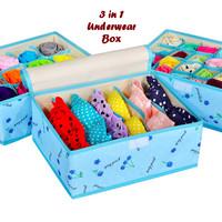 Jual ORGANIZER 3in1 Underwear Box BIRU CHERRY (Bahan lebih t DS Murah