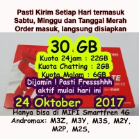 Perdana Smartfren 30GB Fressh 30 GB Aktif 1bulan full 24jam bukan 65GB