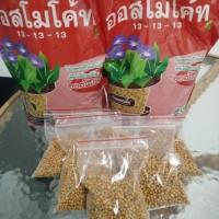 Pupuk Osmocote Thailand 13-13-13 kemasan repack