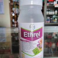 Ethrel 100ml zat pengatur tumbuh