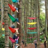 Hammock ayunan kasur tempat tidur gantung pohon wisata hutan kemah