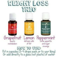 weight loss trio @15ml masing2 young living ylo diet sehat detox