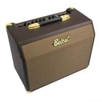 Amplifier gitar akustik