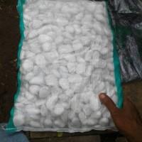 batu koral putih | batu taman