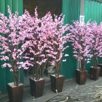 sakura pink bunga hias
