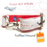 Flying on a Jetplane collar kalung hewan size L