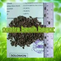 Benih sengon Solomon Gratis ongkir seluruh Indonesia - bibit Sengon