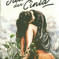 novel jatuh dan cinta - boy candra
