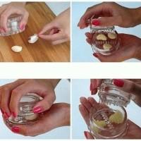 Garlic Pro Easy Chopper/ Alat pencacah bawang putih Sayur Union