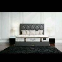 Theraspine Virgina 160 x 200 1 set custom orthopedic Latex spring bed