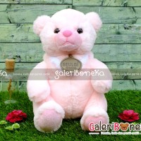 Boneka Cute Bear Pink ( BT - 476238 )