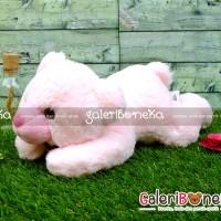 Boneka Cute Bear Tidur Pink ( HK - 476538 )