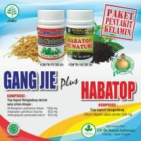 Obat Sipilis Tradisional  Merk Habatop & Gang Jie
