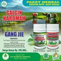 OBAT GINJAL KAROMAH DE NATURE INDONESIA SUNAN KALIJAGA